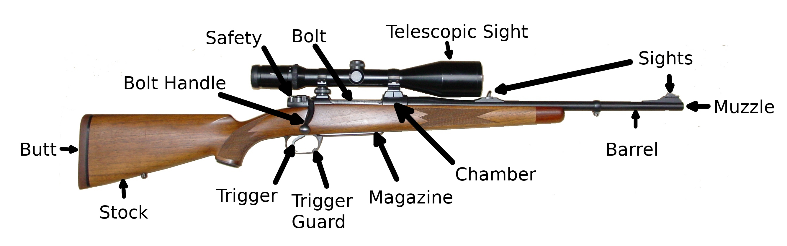 Modern Hunting Rifle